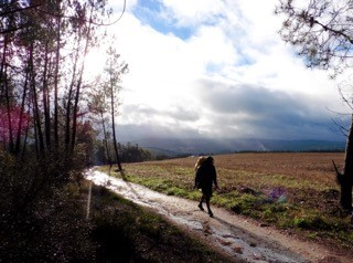 Camino Walk for WINGS and CAFOD