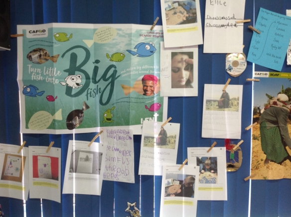 Display in reception class.