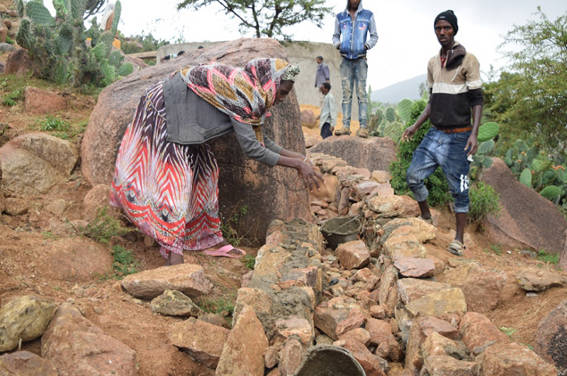 Fiseha from Ethiopia helping to build an irrigation channel.
